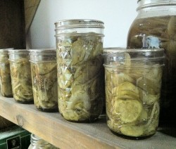 1024px-Jars_of_pickles